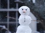 snowman pimp