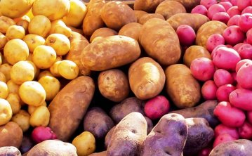 mixed-bag-of-potatoes\.jpg