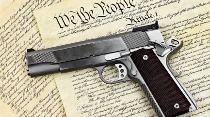 bear-arms_constitution-and-gun