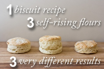 great-biscuits.jpg
