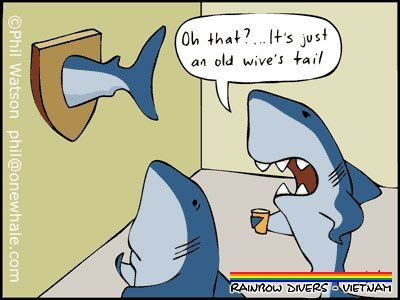 sharky-wives-tail-humor